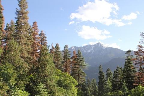 Mountain Vista in Ouray, Colorado